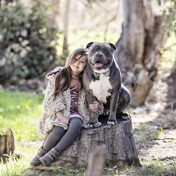 Cheryl Lynn Photography - Dog Photography